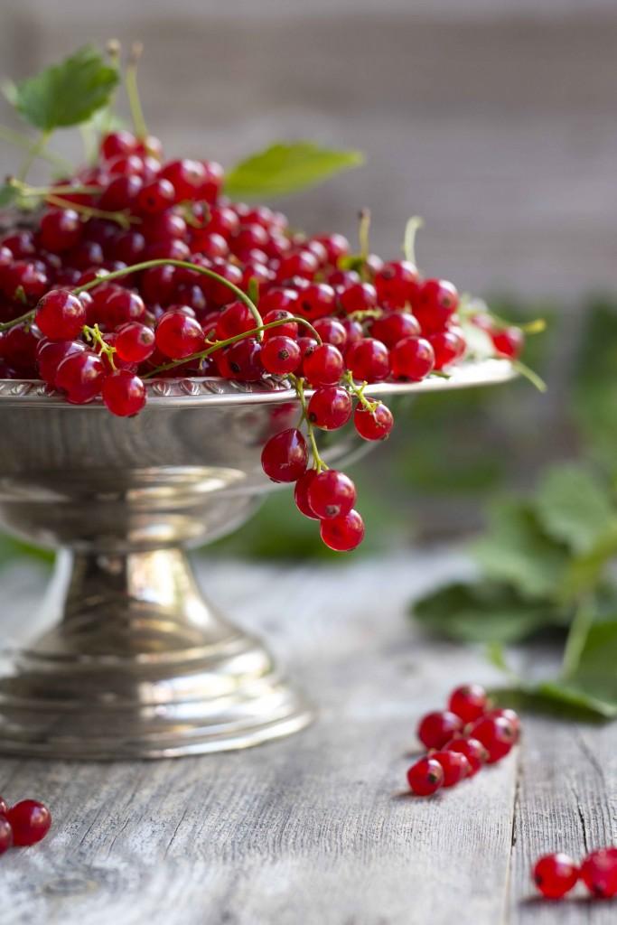 Rödavinbär